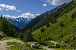 Alpine meadow landscape of high mountains on a clear summer, sunny day. Stock Photos