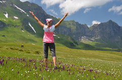 Alpine meadow. Melchsee-Frutt, Switzerland Royalty Free Stock Photography