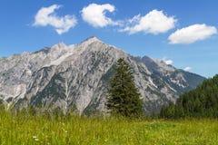 Alpine Meadow with Mountain Range in Background. Austria, Tiro Stock Photo