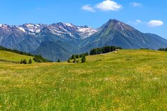 Alpine meadow and mountains on background in Italy. Royalty Free Stock Photo