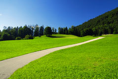 Alpine meadow and road Royalty Free Stock Photo