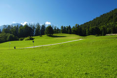 Alpine meadow and road Royalty Free Stock Photos