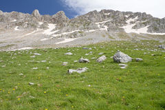 Alpine Meadow And Rocky Summits Stock Photo