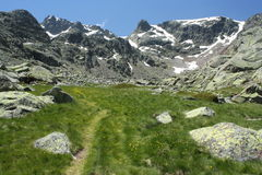 Alpine meadow in Sierra de Gredos Royalty Free Stock Images
