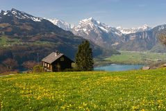 Alpine meadow in spring. (Walensee, Switzerland Stock Photography