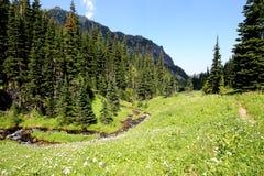 Alpine Meadow with Stream Stock Photos