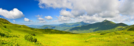 Alpine meadow. In summer mountains Stock Photo