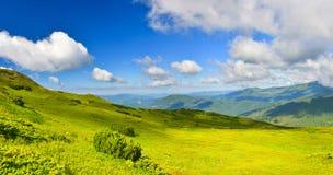 Alpine meadow Royalty Free Stock Photos