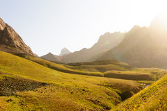 Alpine meadow at sunset Royalty Free Stock Photography