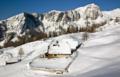 Alpine meadow in winter. Alps, Slovenia Stock Images