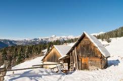 Alpine meadow in winter Stock Photos