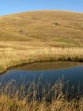 The Alpine meadows Royalty Free Stock Photo
