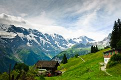Alpine meadows Stock Images