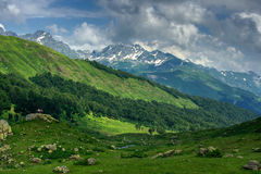 The Alpine meadows. Abkhazia. HDR Stock Image