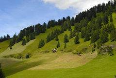 Alpine meadows. The Dolomites (Italian: Dolomiti; German: Dolomiten; Friulian: Dolomitis) are a section of the Alps Royalty Free Stock Photography