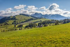 Alpine meadows on the Alpe di Siusi Royalty Free Stock Image
