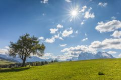 Alpine meadows on the Alpe di Siusi Royalty Free Stock Photography