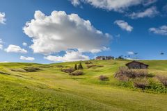 Alpine meadows on the Alpe di Siusi Royalty Free Stock Images