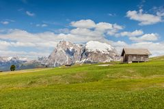 Alpine meadows on the Alpe di Siusi with view to the Plattkofel Stock Photo