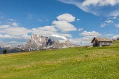 Alpine meadows on the Alpe di Siusi with view to the Plattkofel Royalty Free Stock Photo
