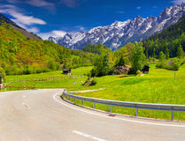 Alpine meadows in the Alps Royalty Free Stock Images