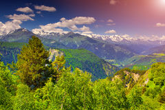 Alpine meadows in the Caucasus mountains. Royalty Free Stock Photos