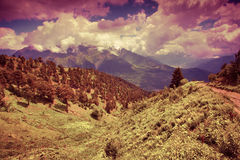 Alpine meadows in the Caucasus mountains Stock Photo