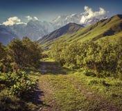 Alpine meadows at the foot of Tetnuldi glacier, Chkhutnieri pass Royalty Free Stock Images