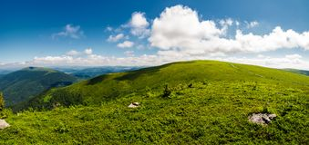 Alpine meadows on the mountain top. Beautiful summer landscape royalty free stock photos