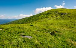 Alpine meadows on the mountain top. Beautiful summer landscape Royalty Free Stock Images