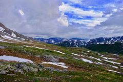 Alpine meadows and mountains at Independence Pass. stock image