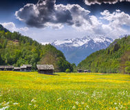 Alpine meadows near the village of Bondo Stock Photography