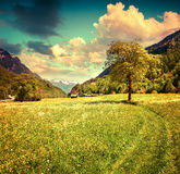 Alpine meadows near the village of Bondo. Alps, Switzerland. Royalty Free Stock Image