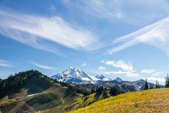 Alpine Meadows of Skyline Divide in late summer, Mount Baker. Blue sky and clouds above snow-capped Mount Baker in Washington State dominate this composition of Stock Photography