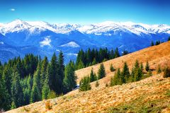 Alpine Morgenlandschaft Dyllic-Frühlinges mit frischen grünen Wiesen Lizenzfreie Stockbilder