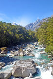 Alpine mountain river in wilderness Stock Photography