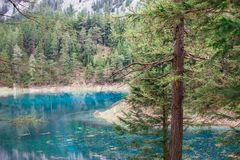 Scenic nature view. Alpine mountaine green lake. Gruner see, Austria Royalty Free Stock Image