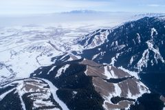 Alpine mountains and forest. Aerial view of the Alpine mountains and forest Stock Image