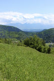 Alpine mountains and meadows. The fields and hills against the backdrop of the Alps Stock Image