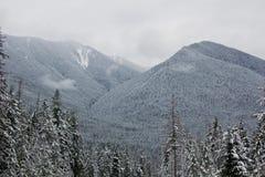 Alpine Mountains. Taken near Nelson BC, Canada. Alpine montains with fresh snowfall Royalty Free Stock Photo
