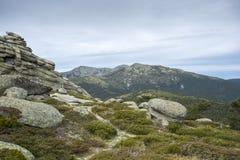 Alpine padded brushwood Stock Image