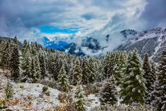 Alpine Pass Giau of the Dolomites. Evergreen forests in the valley covered with the first snow. New Years is soon. On the Alpine Pass Giau of the Dolomites first Royalty Free Stock Photography