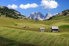 Alpine pasture 2 Stock Photo