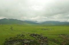 The Alpine pasture. In Altai of China stock photos