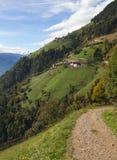 Alpine pasture with hiking road Stock Photos