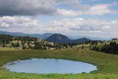 Alpine pasture with mountains in the background, in the foreground a small lake. Heavy thunderclouds hang over the lonely grazing cows stock photo