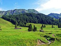 Alpine pastures and meadows on the slopes of Alpstein mountain range. Canton of St. Gallen, Switzerland royalty free stock photo