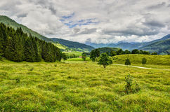 Alpine pastures. Mountain Landscape in the German Alps Royalty Free Stock Photography