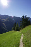 Alpine path. A path in the Alps with the sun in your face Stock Photo
