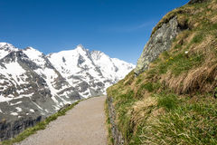 Alpine Path Royalty Free Stock Images